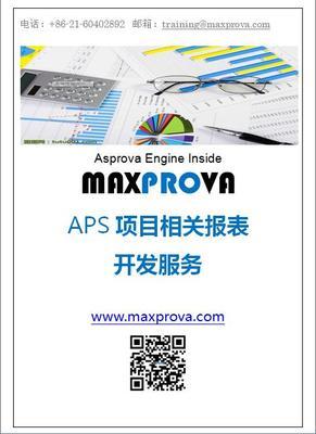 APS报表开发服务/1人日